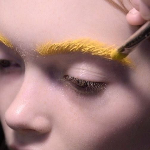 Yellow-eyebrows